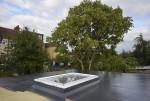 Ecclesbourne Gardens Project